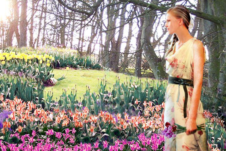 tulip print fabrics collection
