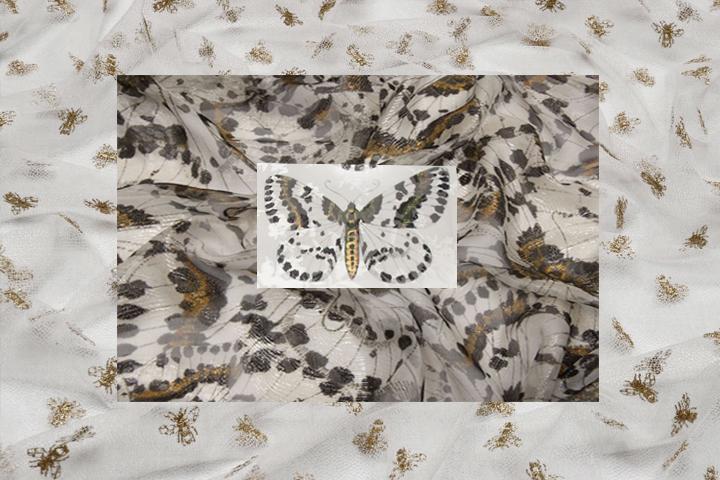 Bees & butterflies print fabrics