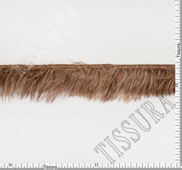Ostrich Feather Trim #2