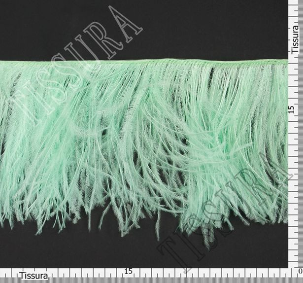 Ostrich Feather Trim #2