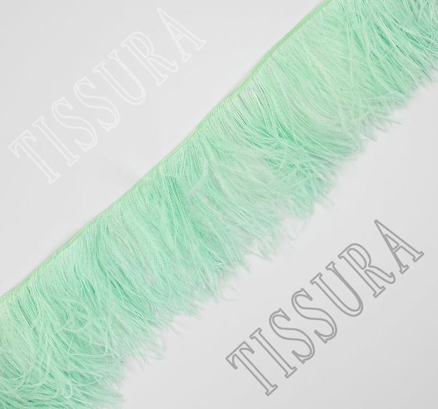 Ostrich Feather Trim #1