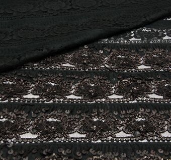 Embroidered Sequined Lace #1