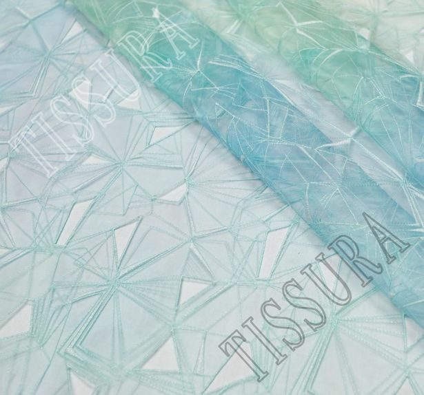 Ombre Embroidered Organza #1