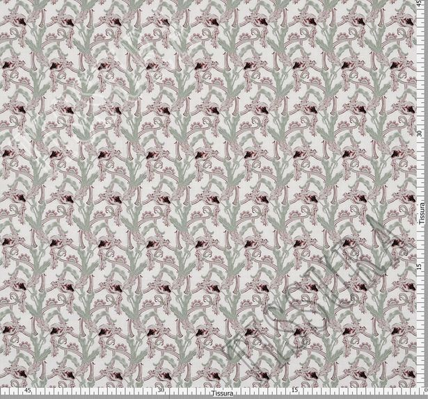 Cotton  #2