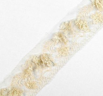 Applique Embroidered Lace Trim #1