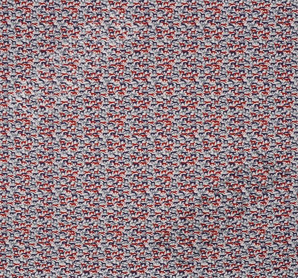 Stretch Cotton Poplin #3