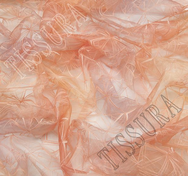Ombre Embroidered Organza #3